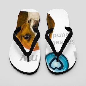 IlovemybassetthoundDARJ Flip Flops