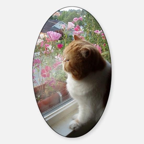 Ahh, Spring! Sticker (Oval)