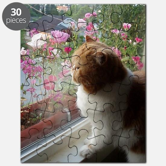 Ahh, Spring! Puzzle