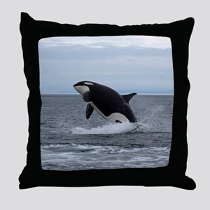 IMG_2447 - Copy Throw Pillow