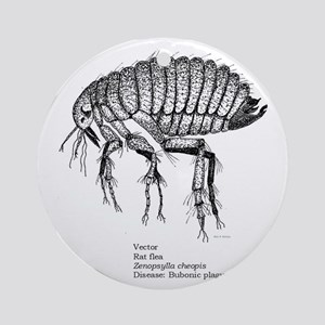 Rat flea--Bookman--corrected-- c Round Ornament