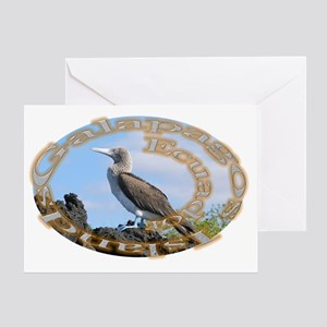 Galapagos_Boobie Greeting Card