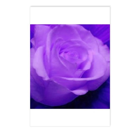 Purple Roses Postcards (Package of 8)
