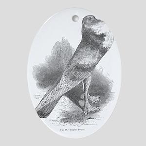 Finch Oval Ornament