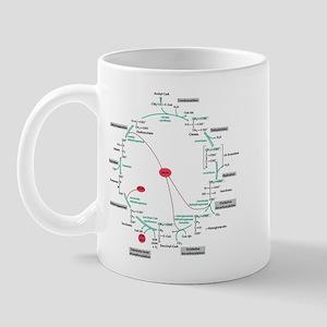Kreb's Cycle Mug