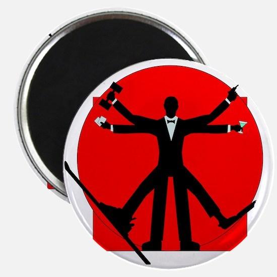 vitrian spy Magnet