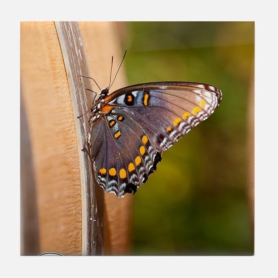 10-09-18_Tarara_Winery_DSC_4436 Tile Coaster