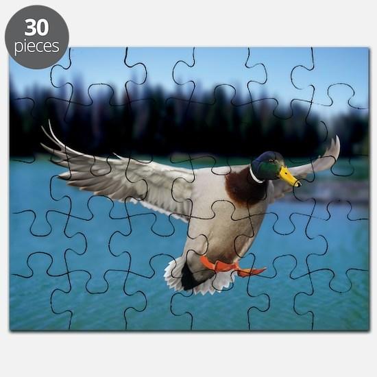 Mallard Duck Puzzle