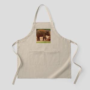 baby elephant BBQ Apron