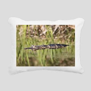 IMG_0390A Rectangular Canvas Pillow