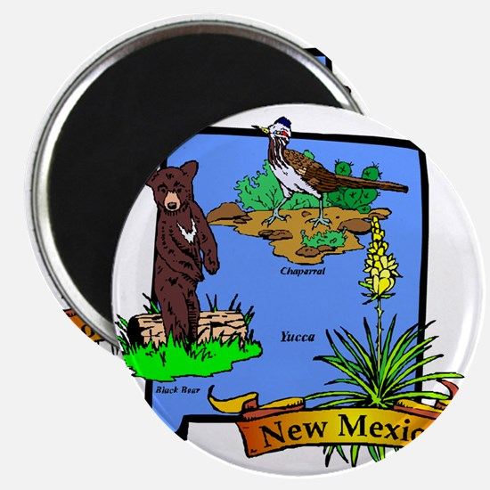 New Mexico Magnet