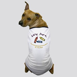 Brightest In The Box Dog T-Shirt