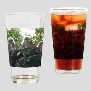 IMG_4802 - Copy Drinking Glass