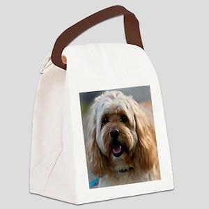 DeeJay Squ Canvas Lunch Bag