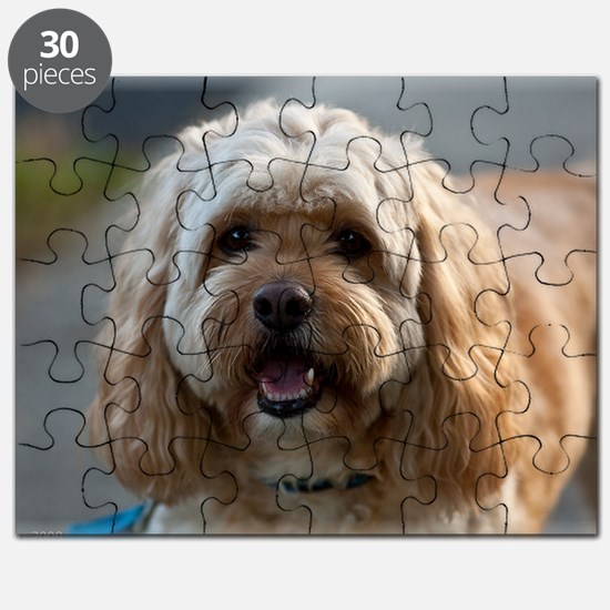 DeeJay Puzzle