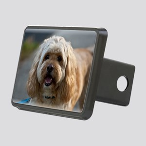 DeeJay Rectangular Hitch Cover