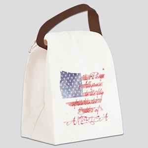 usa_baby Canvas Lunch Bag