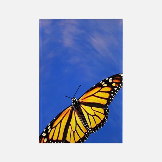 Monarch Butterfly Itouch2 Itouch4 Rectangle Magnet