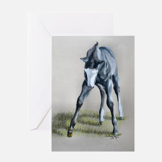 Black foal Greeting Card