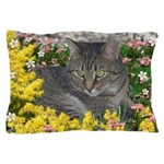 Mimosa Tiger Cat in Mimosa Flowers Pillow Case