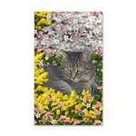 Mimosa Tiger Tabby in Flowers 35x21 Wall Decal