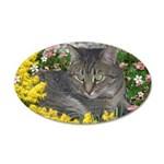 Mimosa Tabby Flowers 35x21 Oval Wall Decal