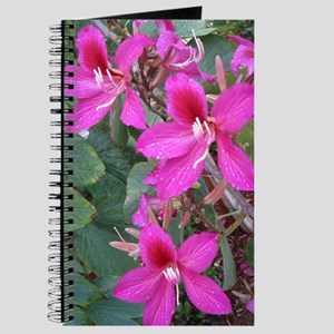 Pink Flower 01 Journal
