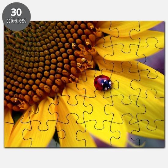 Ladybug on Sunflower1 Puzzle
