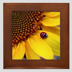 Ladybug on Sunflower1 Framed Tile