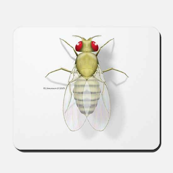 Drosophila Mousepad