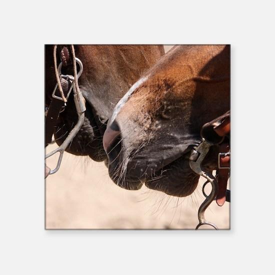 "2 Horse Noses Square Sticker 3"" x 3"""