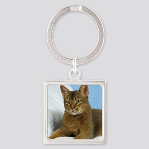 Abyssinian Cat 9Y009D-020 Square Keychain