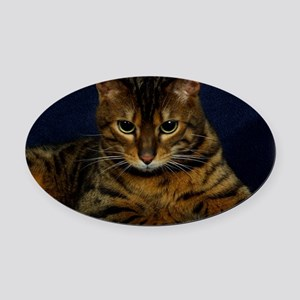 Bengal Cat 9W080D-128 Oval Car Magnet