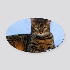 Bengal Cat 9W052D-023 Oval Car Magnet