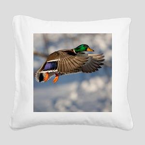 D1271-005cal Square Canvas Pillow