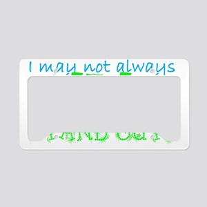Stand Out License Plate Holder