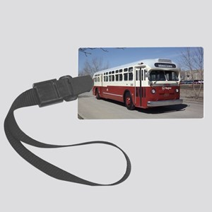 Regina200b Large Luggage Tag