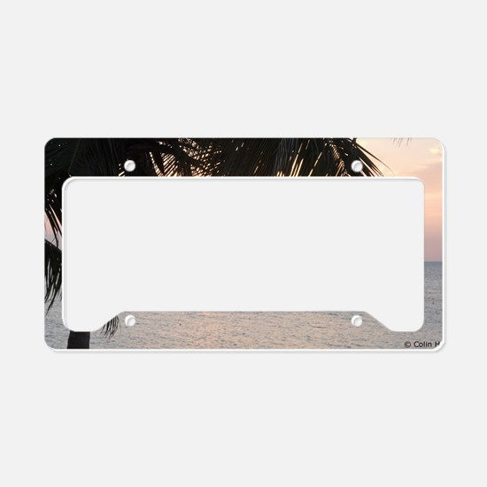 Sun_setting_under_palm_doctor License Plate Holder