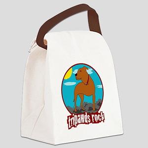 Trpawds Rock Three legged Pitbull Canvas Lunch Bag