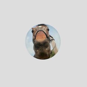 Long Bay Horse Nose Mini Button