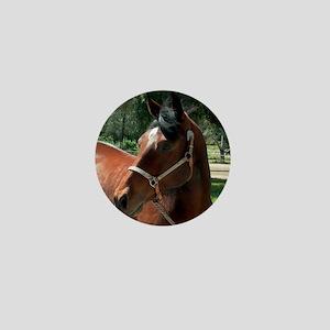Bay Quarter Horse Mare Mini Button