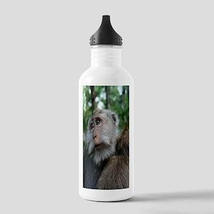 MonekyForrestiPhone Stainless Water Bottle 1.0L