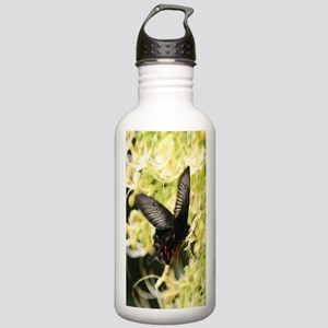 ButterflyiPhone Stainless Water Bottle 1.0L