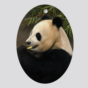 Another Giant Panda Oval Ornament