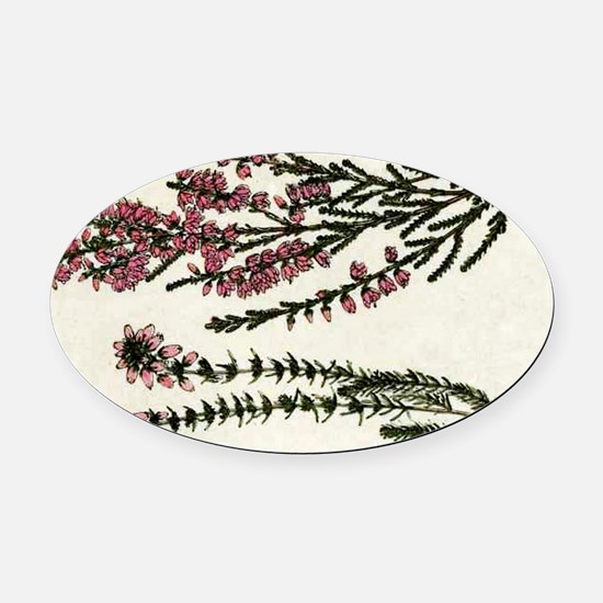 Heath and Heather Ling Oval Car Magnet
