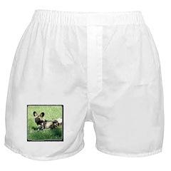 African Wild Dog Boxer Shorts
