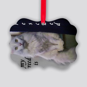 Former Stray Picture Ornament