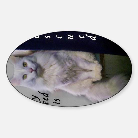 Former Stray Sticker (Oval)