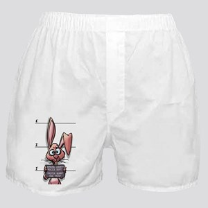 Easter Bunny Mugshot Boxer Shorts