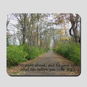 Straight Path2 copy Mousepad